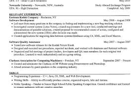 Best Resume Writing Services Nyc Resume Template