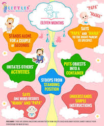 11 Month Development Chart Milestones Of 11 Month Old Baby Baby Development