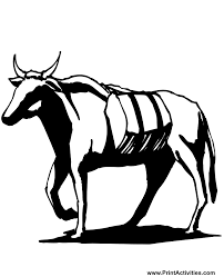 Small Picture Bull Coloring Page A Walking Bull