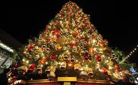 Most Seen Images Featured in Enchanting Classic Christmas Tree Decorating  Ideas for your homes