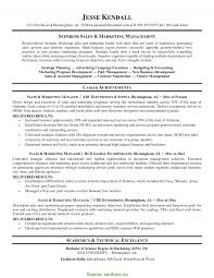 Top Sales Manager Cv Doc Professional Summary For Sales Resume