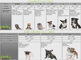 Poodle Puppy Weight Chart Teacup Poodle Size Chart Goldenacresdogs Com