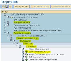Sap Fico Module Learning Creation Of Chart Of Accounts Coa
