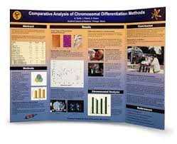 Scientific Tri Fold Posters Astronomy Science Tri Fold Poster