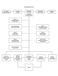 The Organization Chart Simple Organizational Chart Free Download Create Edit