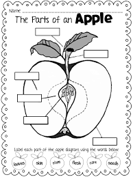 Drawn apple kindergarten worksheet - Pencil and in color drawn ...