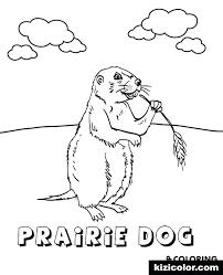 Prairie Dog Coloring Page Therisingsuninfo
