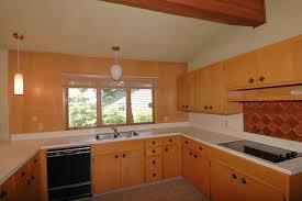 ... Mid Century Kitchen Photo   2