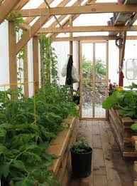 Best 25 Polycarbonate Greenhouse Ideas On Pinterest Buy A Greenhouse For Backyard