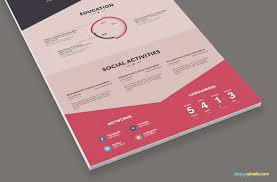 Modern Resume Infographics Infographic Resume Cover Letter Creative Resume