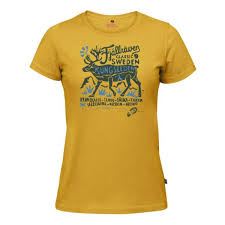 <b>Футболка FjallRaven Classic</b> T-Chirt - купить в интернет-магазине ...
