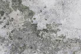 Concrete Floor Cement Texture Dirty Background Stock Image Image