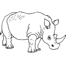 Free Printable Colouring Pages Of Wild Animalsll