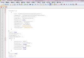 notepad json format programmer sought