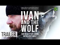 Ivan and the Wolf. The reality of living with a pet wolf (Trailer) - YouTube
