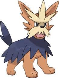Pokemon 2507 Shiny Herdier Pokedex Evolution Moves