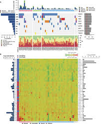 The Confluence Learning Pattern Is Associated With Mesmerizing Genomic Profiling Of ER Breast Cancers After Shortterm Estrogen
