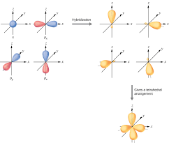 Molecular Hybridization Chart 8 2 Hybrid Atomic Orbitals Chemistry