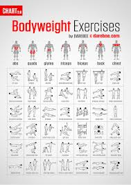 Back Exercises Gym Chart Work Every Muscle With This Bodyweight Exercise Chart