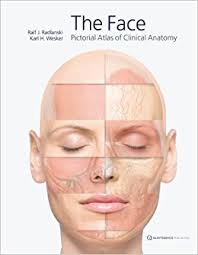 face anatomy the face pictorial atlas of clinical anatomy amazon co uk ralf j