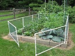 Small Picture Vegetable garden fence chicken wire Video and Photos