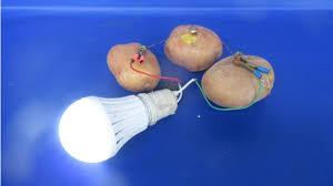 Potato Powered Light Bulb Project Free Energy Potato Generator With Light Bulbs Experiment At Home 2018