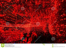 Christmas Red Light Path At The National Zoo Editorial Stock