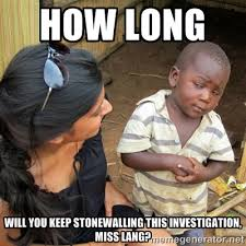 how long will you keep stonewalling this investigation, miss lang ... via Relatably.com