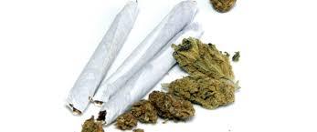 Image result for marijuana pic