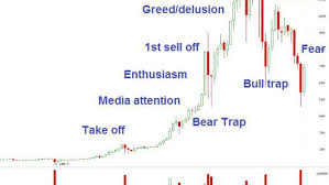 Economic Bubble Chart Bitcoin May Be Following This Classic Bubble Stages Chart