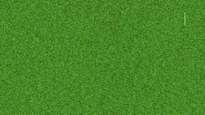 green grass soccer field. Animation Of Drawing The Lines On Soccer Football Field Green Grass Stock Video Footage - VideoBlocks