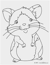 Hamster Coloring Pages Printable Awesome Dwarf Hamster Coloring Page