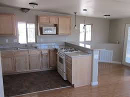 Remodel Mobile Home Kitchen Minimalist