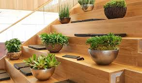 Plant Interior Design Cool Decorating
