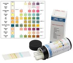 Multistix Color Chart Multistix Urine Strip Multistix 10sg Buy Multistix Urine Strip Urine Test Strips Multistix 10sg Product On Alibaba Com