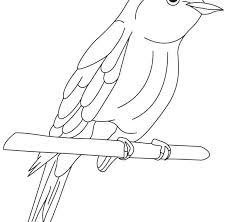 Bluebird Coloring Page Bird Coloring Pages Blue Bird Coloring Page