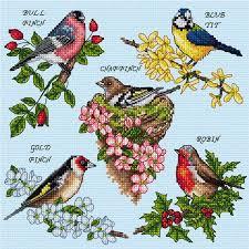 British Garden Birds Chart Ajbd03 British Garden Birds Chart Only Mail Order