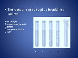the reaction can be sped up by adding a catalyst