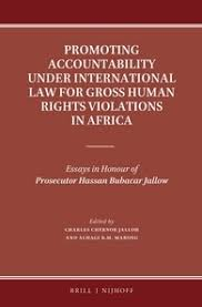 promoting accountability under international law for gross human  promoting accountability under international law for gross human rights violations in africa