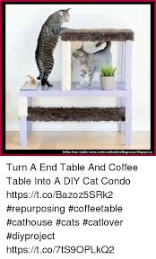 cats memes and coffee dollar crafter cowies craftandcookingcorner bloca