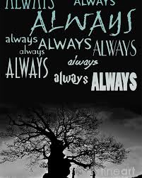 Harry Potter Always Quote Stunning Harry Potter After All This Time Always Quote Poster Poster By Pete