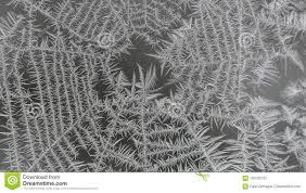 Bereiftes Spinnen Netz Auf Einem Fenster Stockbild Bild Von Kühl