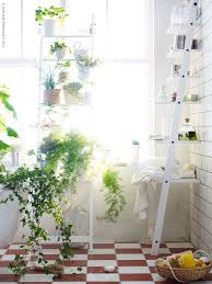 bathroom, Lovely Bathroom Plants To Give Natural Nuance With Preety Flower  In Chic Flowerpot Put