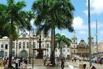 imagem de Pau Brasil Bahia n-18