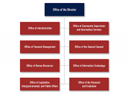 Doj Org Chart 2018 Who We Are About The Agency Organizational Structure Csosa