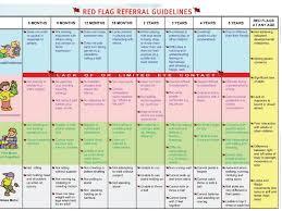 14 Month Development Chart Red Flags For Referral Babydevelopmentmilestones Child