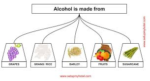Alcohol Types Chart Different Types Of Alcoholic Beverages