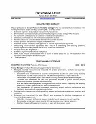 portfolio manager resume sample software manager resume example