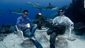 Freedivers sip coffee with sharks 30 meters under sea CNN