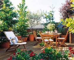Small Picture 50 Balcony Garden ideas India Easy and Fast to Apply My